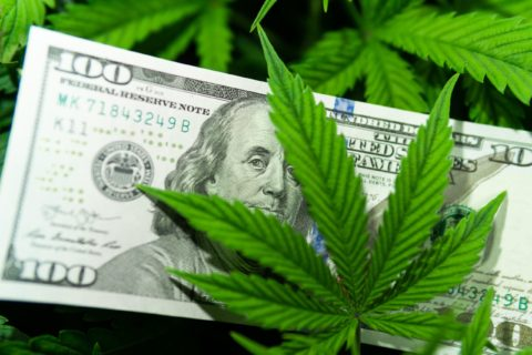 MARIJUANA: PAY HIGH TAXES TO GET HIGH