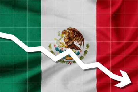 MEXICO: ECONOMY SHRINKS IN 2019