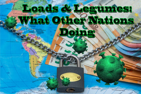 LOANS AND LEGUMES: WHAT OTHER NATIONS ARE DOING