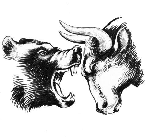 BEAR VANQUISHES BULL